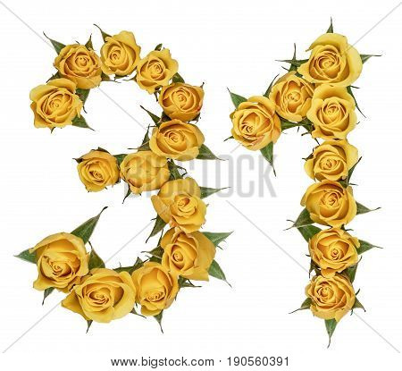 Arabic Numeral 31, Thirty One, From Yellow Flowers Of Rose, Isolated On White Background