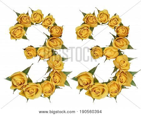 Arabic Numeral 33, Thirty Three, From Yellow Flowers Of Rose, Isolated On White Background