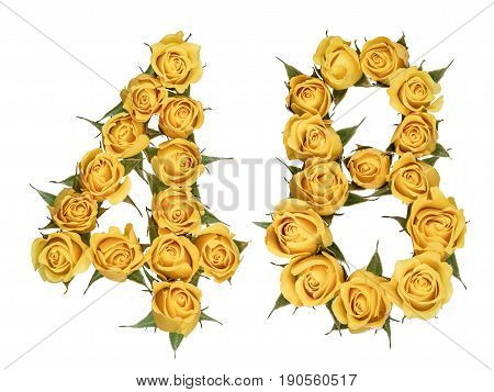 Arabic Numeral 48, Forty Eight, From Yellow Flowers Of Rose, Isolated On White Background