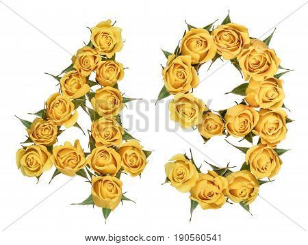 Arabic Numeral 49, Forty Nine, From Yellow Flowers Of Rose, Isolated On White Background