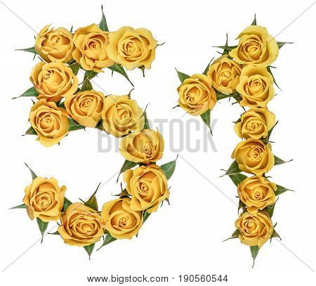 Arabic Numeral 51, Fifty One, From Yellow Flowers Of Rose, Isolated On White Background