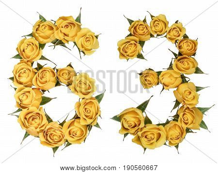 Arabic Numeral 63, Sixty Three, From Yellow Flowers Of Rose, Isolated On White Background