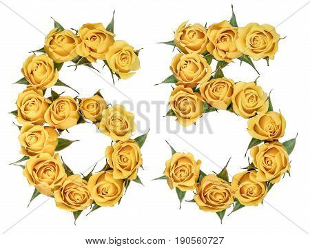 Arabic Numeral 65, Sixty Five, From Yellow Flowers Of Rose, Isolated On White Background