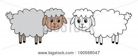 two drawn sheep animal, set vector illustration
