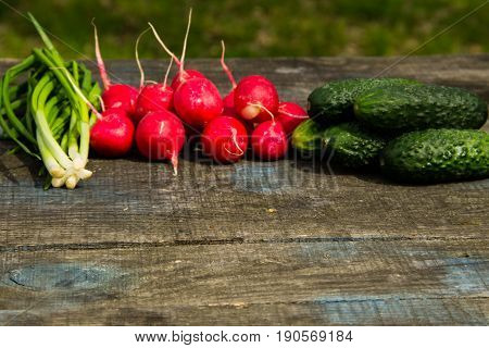 Radishes, Cucumber And Green Onion On Rustic Wooden Table Outdoor