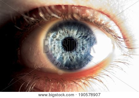 Close-up of blue human eye in strong light