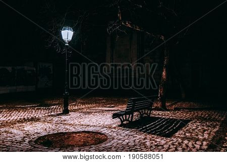 Lonely bench on paving stone with long shadow in front of working street lantern at night with bare tree near and oval empty flowerbed winter night in Lisbon Portugal