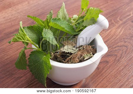 Fresh Green And Dried Lemon Balm In White Mortar, Concept Of Herbalism And Alternative Medicine