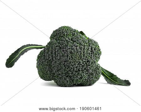 Broccoli vegetable top view isolated on white background