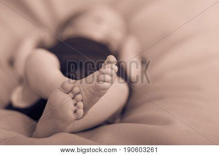 Closeup of tiny baby feet. Newborn photography.