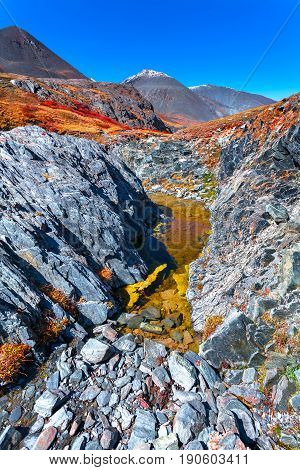 Colourful rocky tundra in the fall. The red yellow grass growing on stones between tops. Russia Altai.