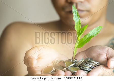Money growing and plant growth in man hand concept.