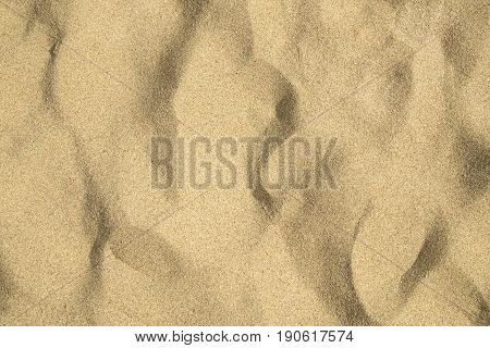 The beach sand texture close up as background