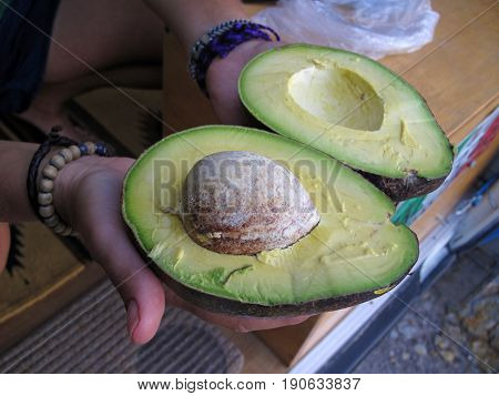 Woman showing huge fresh avocado in close up, authentic picture, El Salvador, Central America