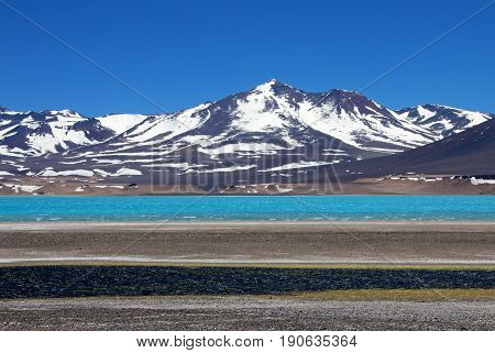 Beautiful Green Lagoon, Laguna Verde, near mountain pass San Francisco and Nevado Ojos Del Salado, Atacama, Chile, South America