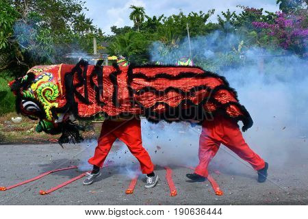 Lion Dance in the midst of fire crackers