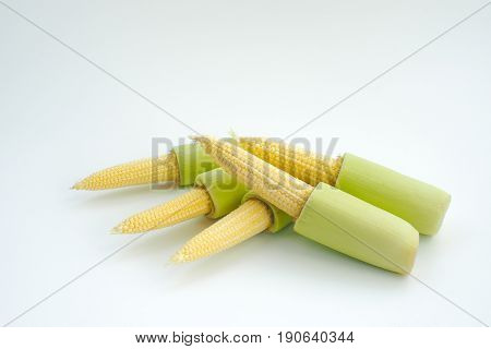 Isolated baby corn with green stem on white background