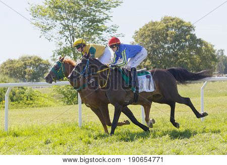 STOCKHOLM SWEDEN - JUNE 06 2017: Tough fight between two jockeys riding gallop arabian race horses at Nationaldags Galoppen at Gardet. June 6 2017 in Stockholm Sweden