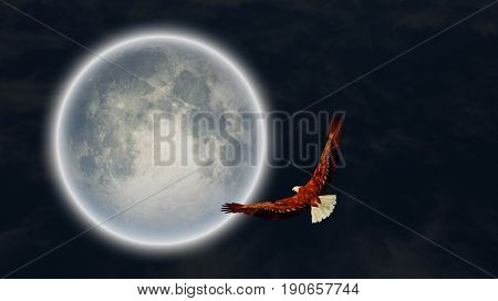 Surrealism. Full moon. Flying eagle in the sky.  3D rendering   Some elements provided courtesy of NASA