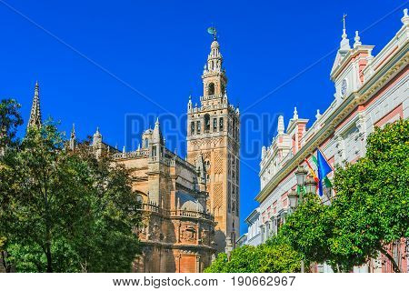 Street view of Cathedral de Santa Maria de la Sede with the Giralda bell tower, Andalusia, Spain