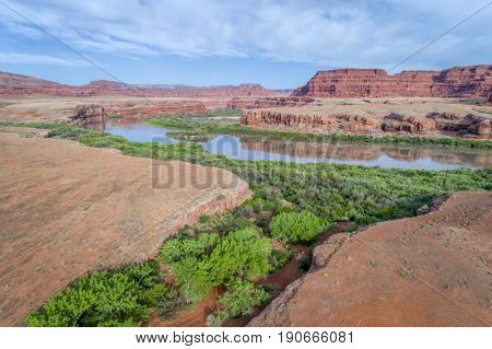 aerial view of the canyon of Colorado River below Moab, Utah with green riparian vegetation