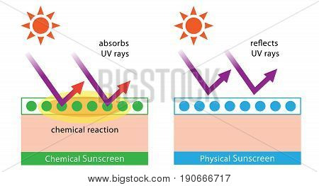 diagram of chemical sunscreen and physical sunscreen. physical sunscreens reflect the sun's rays. chemical sunscreens absorb UV rays in a chemical reaction that dissipates the heat back off the skin