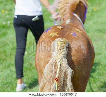 STOCKHOLM SWEDEN - JUNE 06 2017: Decorated behind of a pony gallop race horse at Nationaldags Galoppen at Gardet. June 6 2017 in Stockholm Sweden
