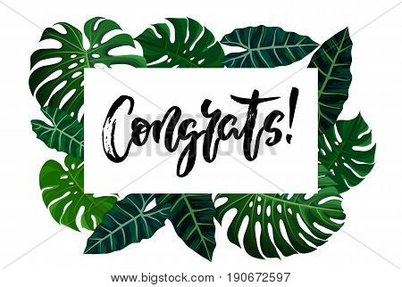 Congrats hand written lettering. Modern brush calligraphy with green tropical exotic monstera palm leaves. For congratulations card, greeting card, invitation poster. Vector illustration stock vector.