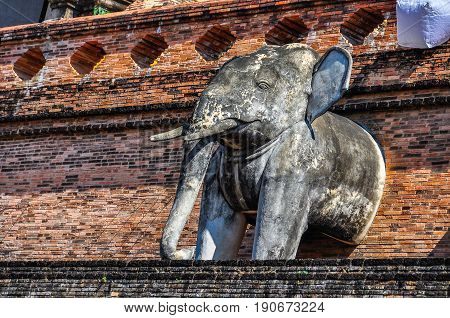 Elephants In Wat Chedi Luang In Chiang Mai, Thailand