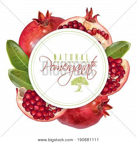 Vector round banner with pomegranate fruits on white background. Design for cosmetics, spa, pomegranate juice, health care products, perfume. Can be used as vegetarian menu or summer background