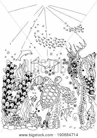 Zentangle stylized sea world. Dolphin and turtle isolated on white background. Hand Drawn aquatic doodle vector illustration. Ocean life.
