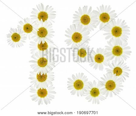 Arabic Numeral 19, Nineteen, From White Flowers Of Chamomile, Isolated On White Background