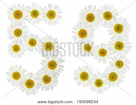 Arabic Numeral 59, Fifty Nine, From White Flowers Of Chamomile, Isolated On White Background