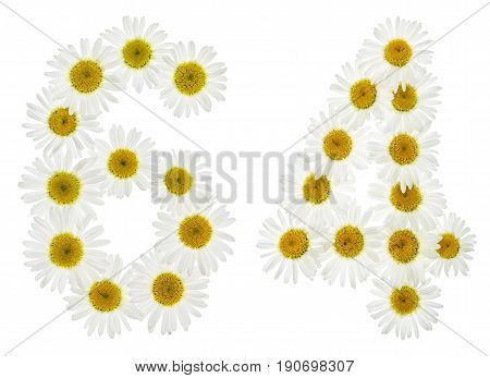 Arabic Numeral 64, Sixty Four, From White Flowers Of Chamomile, Isolated On White Background