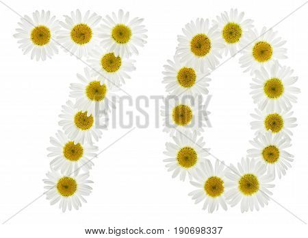 Arabic Numeral 70, Seventy, From White Flowers Of Chamomile, Isolated On White Background