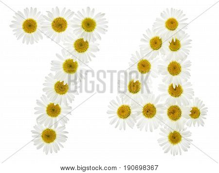 Arabic Numeral 74, Seventy Four, From White Flowers Of Chamomile, Isolated On White Background