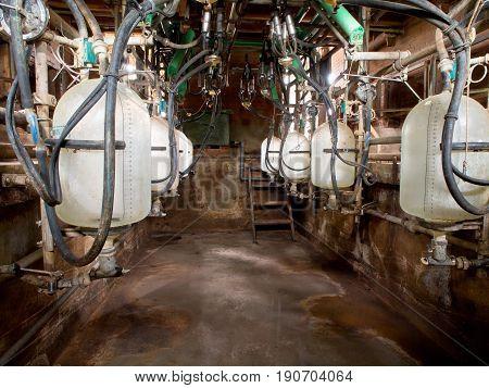 Small Milking Parlor
