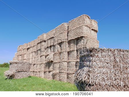Stacked hay bales in farmers field