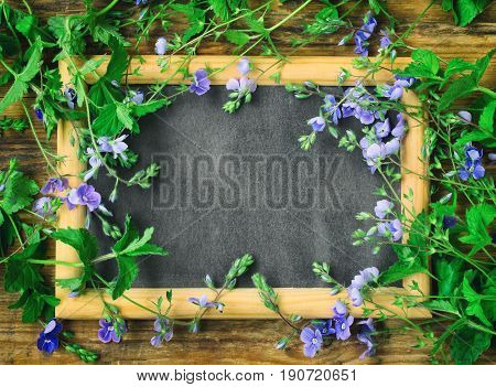 Small delicate blue flowers veronica persian blackboard in frame on wooden table space for text retro style