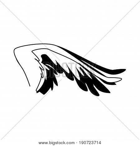 spread out bird or angel wing feathers icon vector illustration
