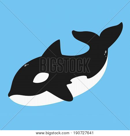 killer whale, orca vector illustration on blue background.