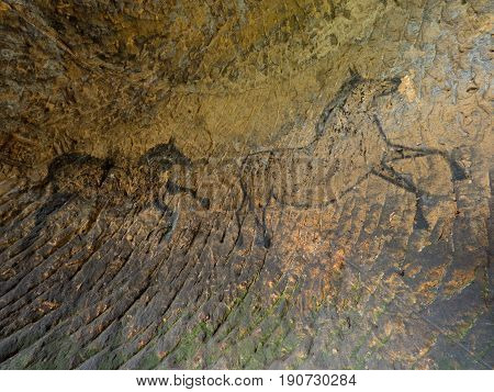 Discovery Of Prehistoric Paint Of Horse In Sandstone Cave. Spotlight Shines On Historical Human Pain