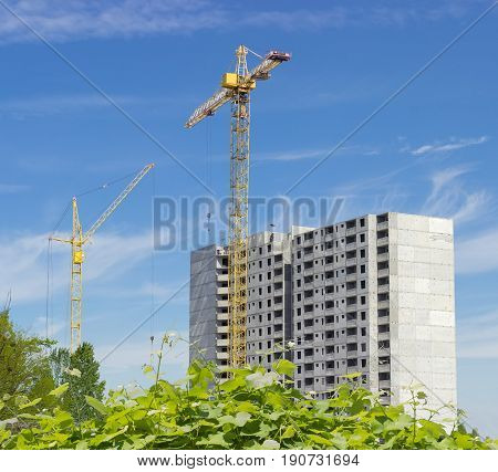 Two different tower cranes with latticed booms on a construction of a multi-story residential building with bush of wild grapes in the foreground