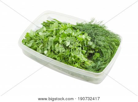 Bundles of the fresh dill and cilantro in transparent plastic container on a light background