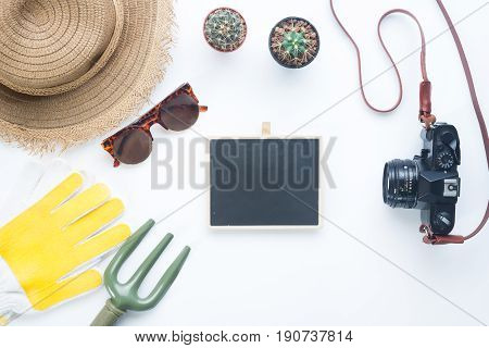 Female gardener items with cactus and camera Flay lay style