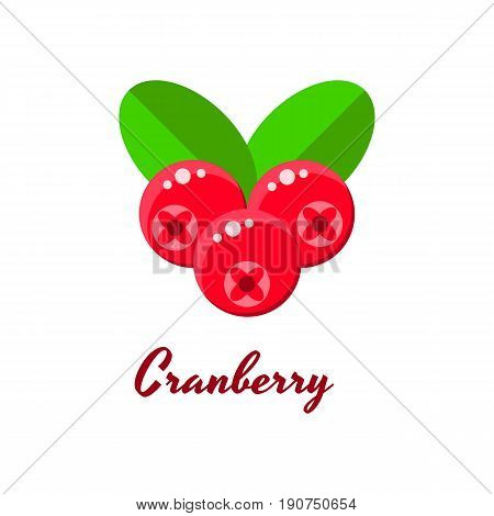 Ector Illustration, Cranberries, Forest Red Berries