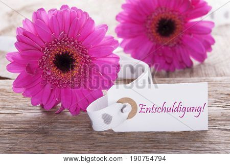 Label With German Text Entschuldigung Means Excuse. Pink Spring Gerbera Blossom. Vintage, Rutic Or Aged Wooden Background. Card For Spring Greetings.