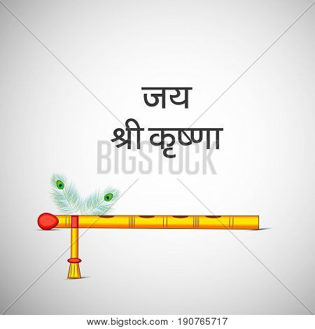 illustration of flute and peacock feather with Jai Shree Krishna text in Hindi language on occasion of hindu festival Janmashtami birth day of hindu god krishna