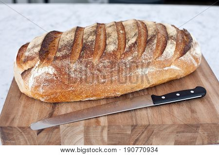Freash Crusty Bread