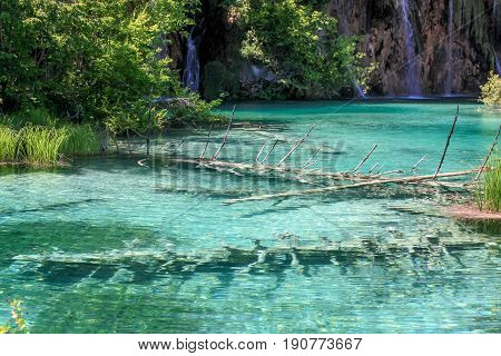 Plitivice nature, trees in lake water, lake and rockies. Blue lake, green lake